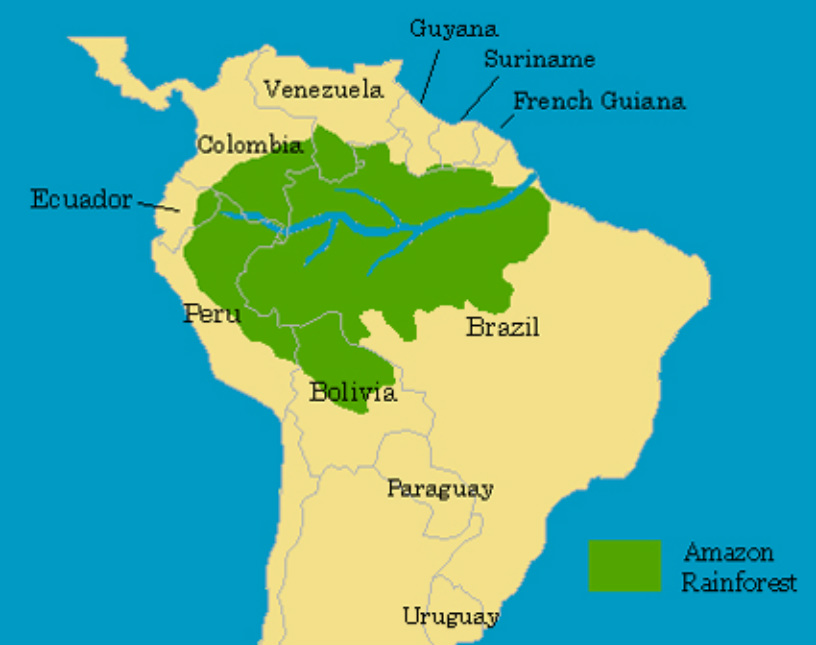Amazon rainforest location picture sciox Image collections